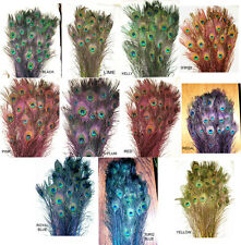 """10 Stem Dyed Iridescent Peacock Eye Feathers 30-35"""" length 11 colors available"""