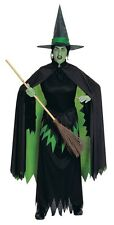 The Wizard of Oz Wicked Witch of the West Adult Costume
