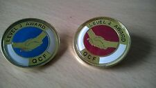 QCF Qualification Awards Level 2 & 3 Lapel Pin Badge Gilt or Nickel, QCF