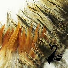 Feather Full Hackle on Fringe - Natural Tones (Price per 50cm) - Craft Millinery
