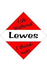 Lewes Car/window signs / Personalised signs / flexible magnets