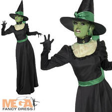 Wicked Witch Ladies Fancy Dress Halloween Womens Book Character Adults Costume