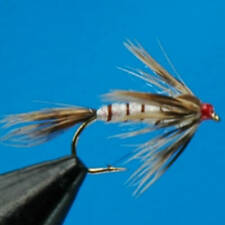 4x MAYFLY WTD NYMPHS TROUT FISHING FLY