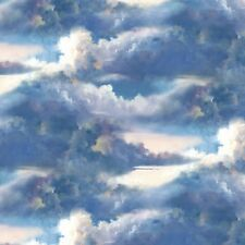 Wind and Waves Cotton Quilt/Sewing/Craft Fabric 83040-144 Clouds Wilmington