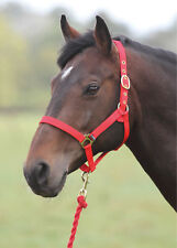 SHIRES WESSEX HEADCOLLAR AND LEAD ROPE SET 362E horse pony foal leadrope durable