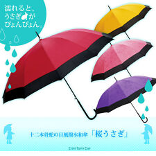 Traditional Japanese Umbrella With Water MAGIC: 2 Different Color