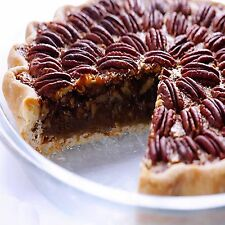 PECAN PIE Fragrance Oil Candle/Soap Making,Bath & Body