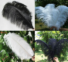 Wholesale 5-100pcs High Quality Natural WHITE OSTRICH FEATHERS 6-24inch/15-60cm
