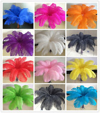 High Quality 10/50/100pcs Natural 14-24 inch/35-60cm OSTRICH FEATHERS decoration