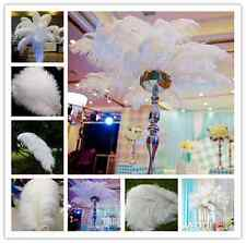 Wedding decoration 10-100pcs Natural WHITE OSTRICH FEATHERS 6-24inch/15-60cm