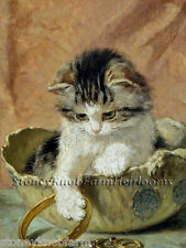 Kitten & Jewelry ~ Cats, Kittens ~ Counted Cross Stitch Pattern