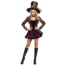 Mad Hatter Costume Adult Alice in Wonderland Halloween Fancy Dress