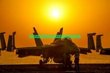 U.S. Navy F/A-18E Super Hornet Fighter Squadron VFA 81 Photo Military Color F 18