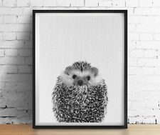 HEDGEHOG Art Print Modern Decor Black and White Nursery Animals Poster GICLEE