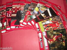 2010/11 LIVERPOOL HOME PROGRAMMES CHOOSE FROM