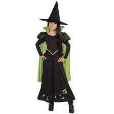 Wizard of Oz Wicked Witch Of The West Halloween Costume - Child Size