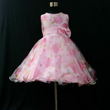 P3211 Pinks Princess Family Wedding Party Flower Girls Dresses SIZE 3,4,5,6,7,8T
