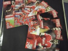 2008/09 LIVERPOOL HOME PROGRAMMES CHOOSE FROM