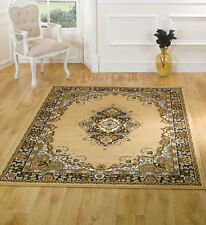 Large Traditional Classic Beige Rug Runner Carpet