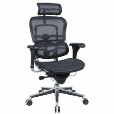 Eurotech Ergohuman ME7ERG, Mesh Ergonomic Chair with Headrest