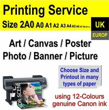 Your Photos Poster Canvas Art Picture Banner Large Format Pro Printing Service