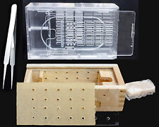 apitherapy bee box, bee hotel,container plastic or wooden.Tweezer
