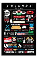 Friends TV Show Infographic Wall Poster New - Laminated Available