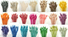 """100 Peacock Feathers w/ Eyes 30-35"""" L  Bleached & dyed Your choice of 21 colors"""