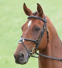 New Padded Nut Brown Brass XL/Full/Cob/Pony Shires Brackley Grackle Bridle 290