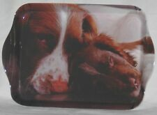 Country Matters Trinket Tray - Various Designs