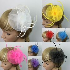 Fashion Lady Women Hair Clip Head Mesh Flower Feather Wedding Party Fascinator