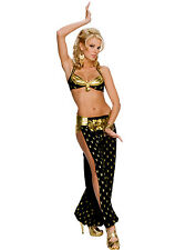 Playboy Harem Girl Sultry Belly Dancer Women Sexy 2 Piece Halloween Costume XS-L