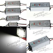 20W 30W 50W 100W White LED Chips + Waterproof IP65 LED Driver High Power Supply