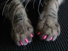 Hdp Kitty or Doggy Caps Soft Nail Claws Paws Cats pick size color