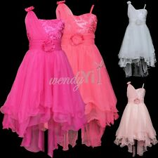 Girls Kid Princess Sequin Party Evening Bridesmaid Wedding Tailing Dress Clothes