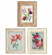 Flea Market Florals 25 Flower Pictures Framed Wallies Wallpaper Stickers Decals