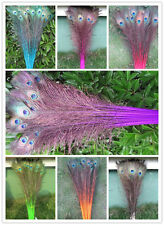 Wholesale 10/20/50/100 pcs peacock feather eyes 28-32 inches in various colors