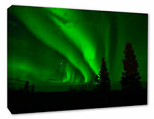 NORTHERN LIGHTS Wall Canvas Print Picture Green Aurora Trees A1/A2/A3/A4