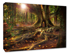 - TREE HOUSE FOREST  WOOD LANDSCAPE FANTASY CANVAS/POSTER PICTURE PRINT
