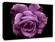 - Rose Flower Picture Lilac Purple Rose Canvas Print Flower Art Decor A1/A2/A3