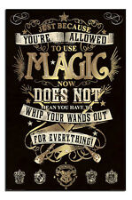 Harry Potter Magic Poster New - Maxi Size 36 x 24 Inch