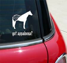 GOT APPALOOSA? APPALOOSA HORSE GRAPHIC DECAL STICKER ART CAR WALL DECOR