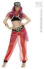 Ladies Sexy Harem Dancer Costume Deluxe for Middle Eastern Turkish Fancy Dress