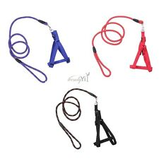 Nylon Pet Dog Traction Rope Leash With Harness Chest Belt Set Small Medium Dog