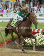 Afleet Alex 2005 Preakness Stakes #695 Photo