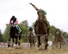 Afleet Alex 2005 Preakness Stakes #696 Photo