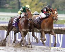 """Ginger Punch 2007 Breeders; Cup Distaff Photo 8"""" x 10 - 24"""" x 30"""""""