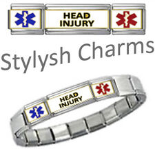 HEAD INJURY MEDICAL ID 9mm + Italian Charm SILVER TONE MATTE Starter Bracelet