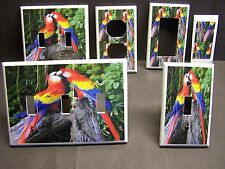 COLORFUL KISSING MCCAW PARROTS  IMAGE LIGHT SWITCH COVER PLATE OR OUTLET