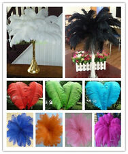 Beautiful!10/20/50/100/200pcs natural ostrich feathers 8-26inches/20-65cm
